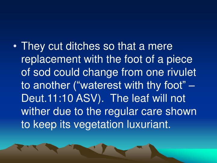"They cut ditches so that a mere replacement with the foot of a piece of sod could change from one rivulet to another (""waterest with thy foot"" – Deut.11:10 ASV).  The leaf will not wither due to the regular care shown to keep its vegetation luxuriant."