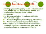 urinary tract infection uti12