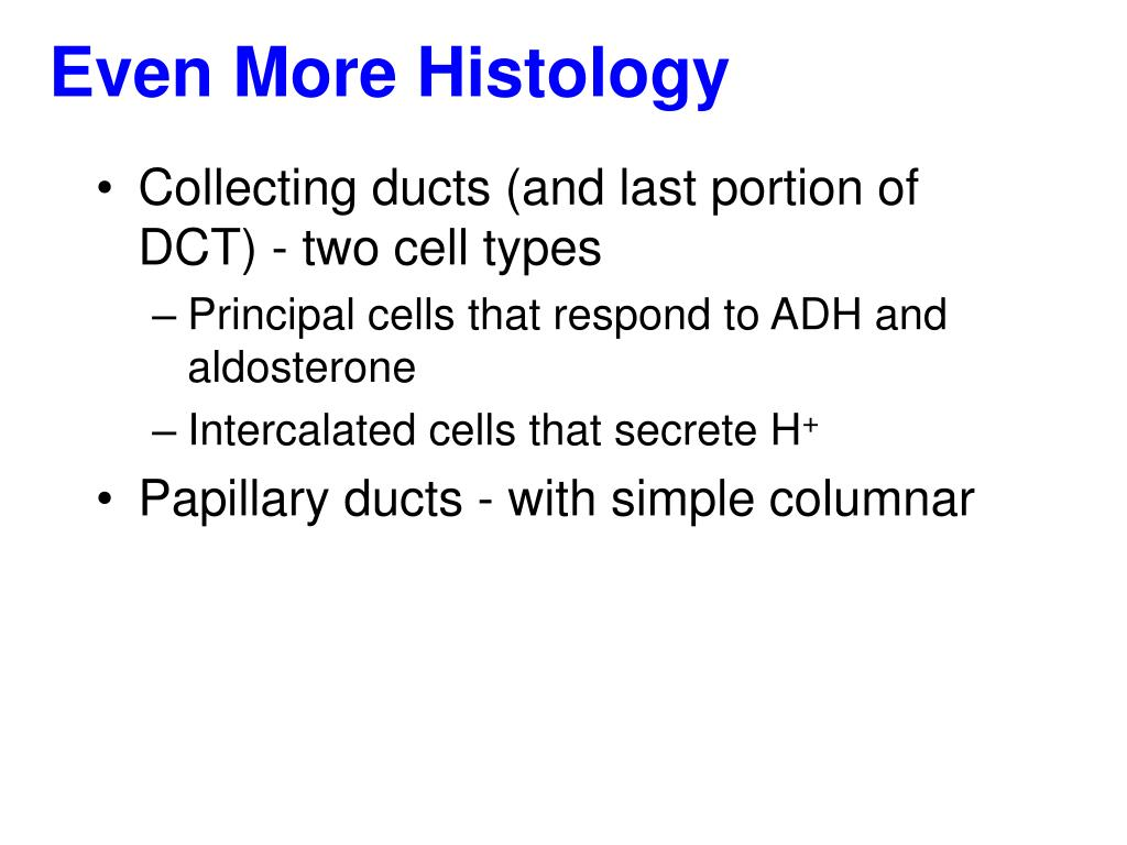 Even More Histology