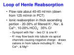 loop of henle reabsorption
