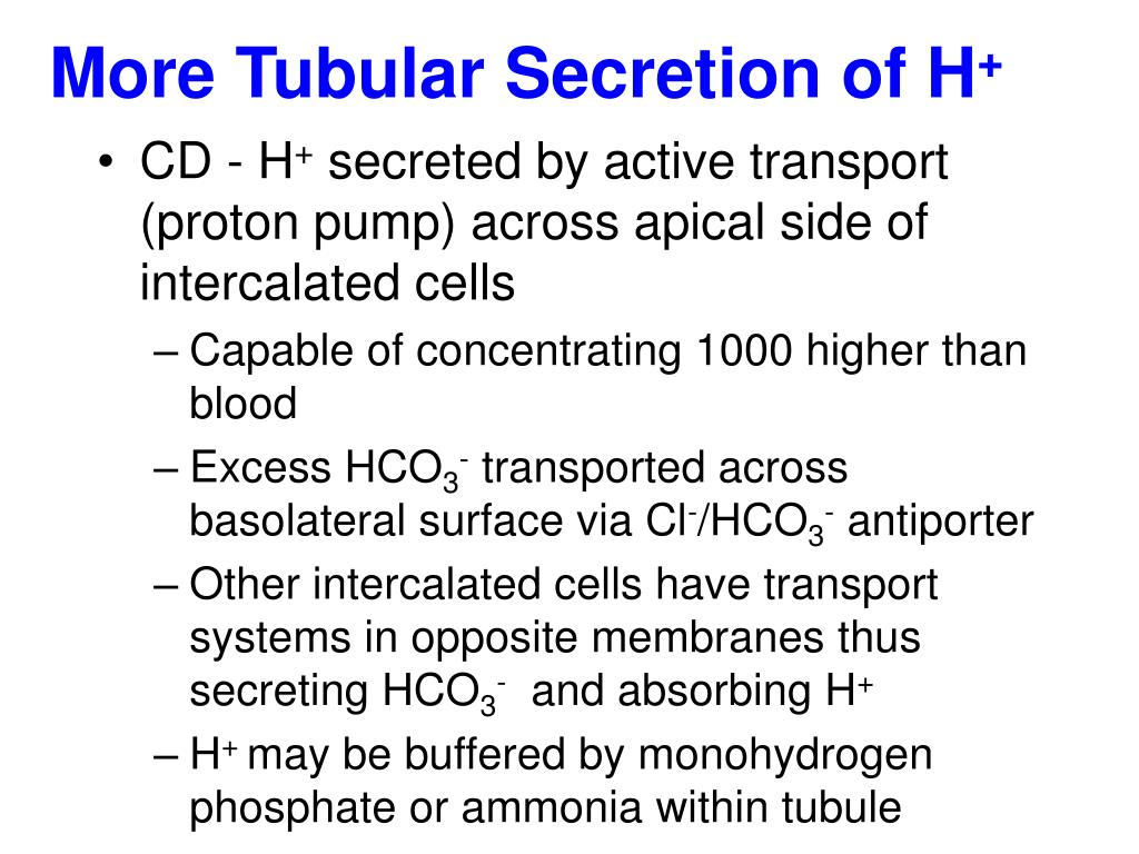 More Tubular Secretion of H