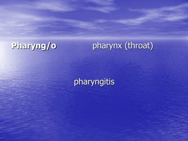 Pharyng/o
