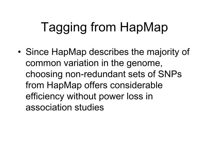 Tagging from HapMap