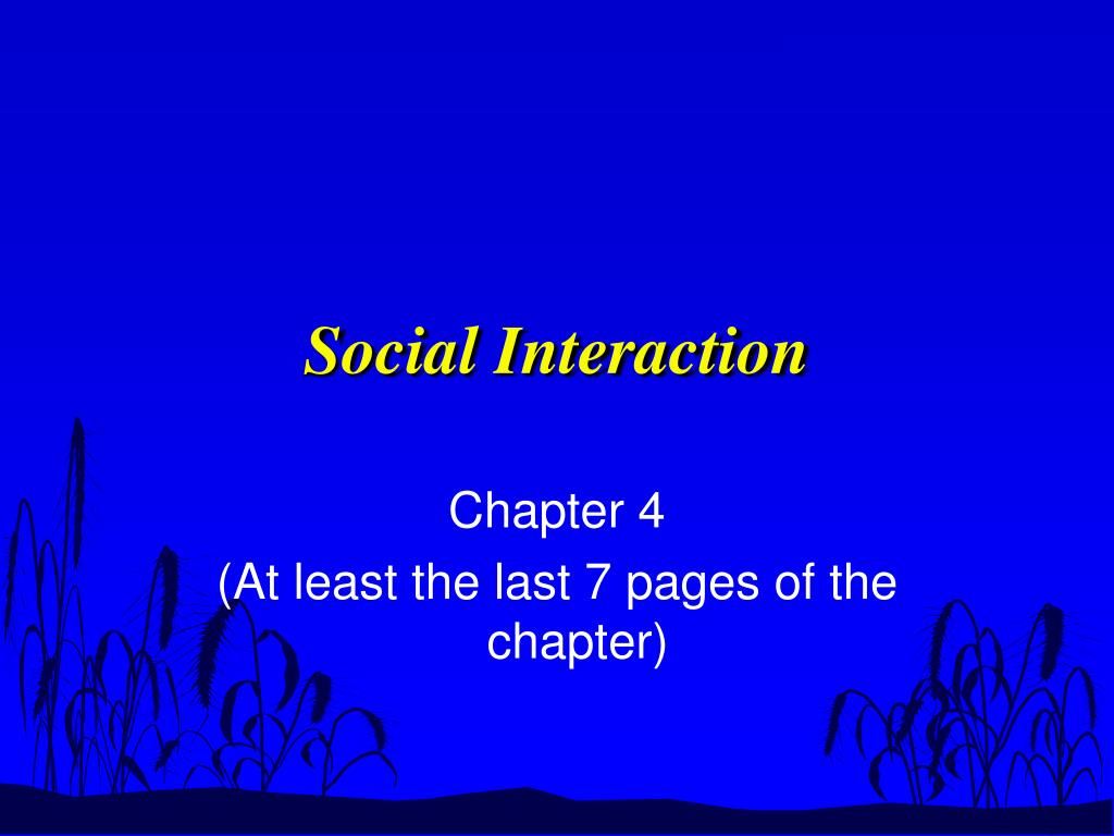 social interaction l.