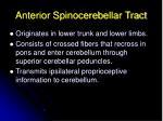 anterior spinocerebellar tract