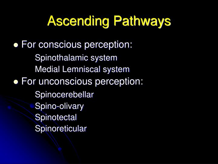 Ascending pathways3