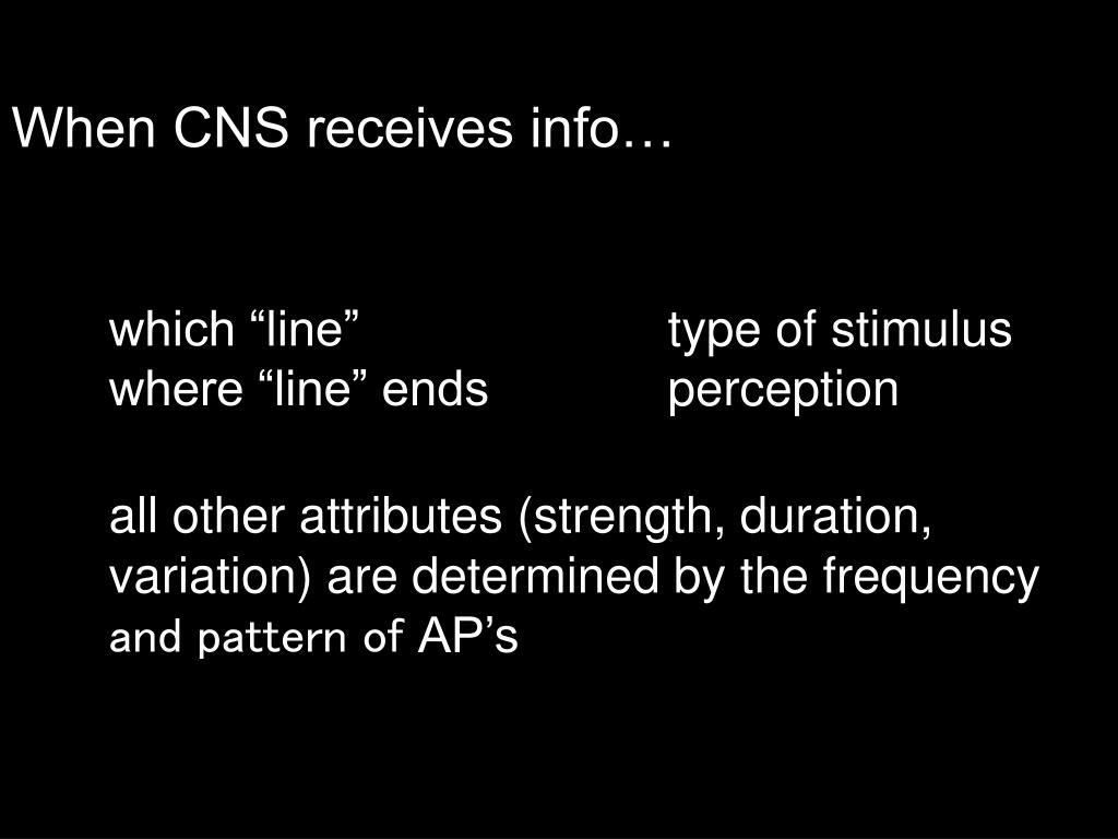 When CNS receives info…