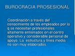 burocracia prosesional