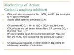 mechanisms of action carbonic anydrase inhibitors