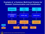 example of a common multi level scheme for disaster communication and coordination