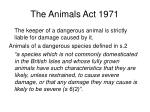 the animals act 1971