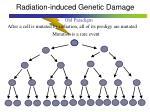 radiation induced genetic damage