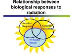 relationship between biological responses to radiation