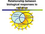relationship between biological responses to radiation30