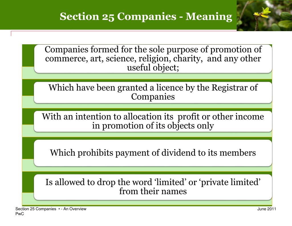Section 25 Companies - Meaning