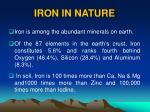 iron in nature