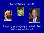 are attitudes useful