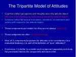 the tripartite model of attitudes