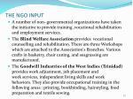 the ngo input