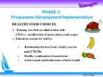 phase 2 programme development implementation
