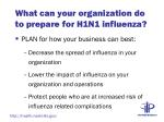 what can your organization do to prepare for h1n1 influenza