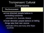 trompenaars cultural dimensions15
