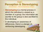 perception stereotyping awareness pre competency stage