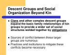 descent groups and social organization beyond kin