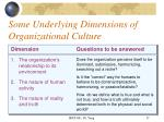 some underlying dimensions of organizational culture