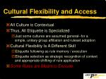 cultural flexibility and access