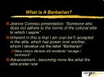 what is a barbarian