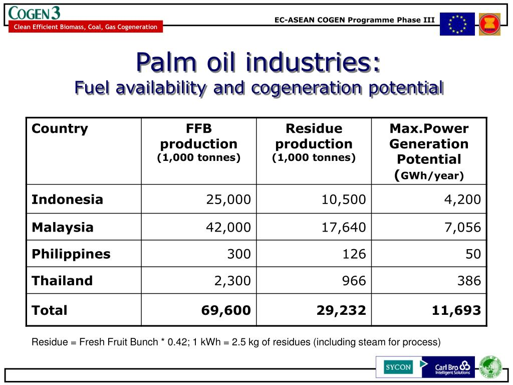 Palm oil industries: