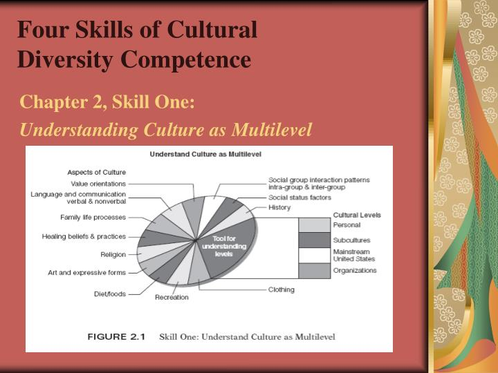 four skills of cultural diversity competence n.