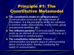 principle 1 the constitutive metamodel