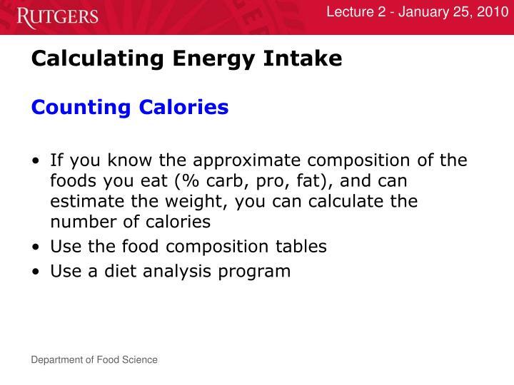 Calculating Energy Intake