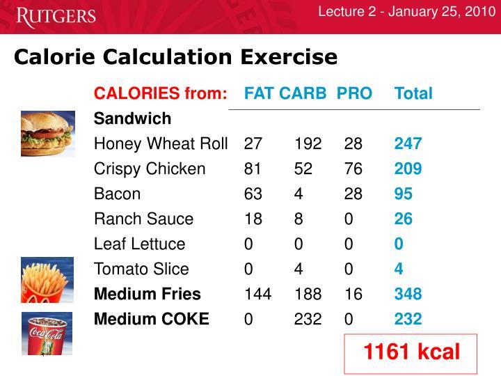 Calorie Calculation Exercise