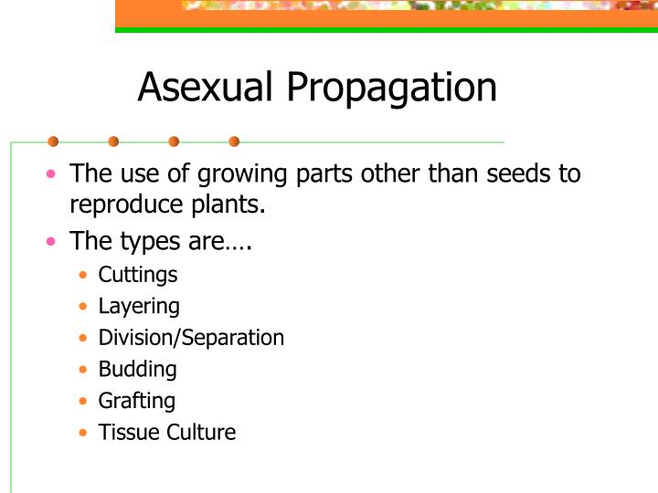 Asexual propagation introduction to logic