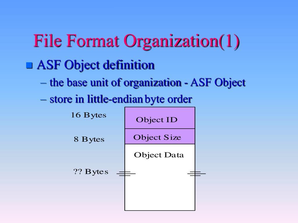 File Format Organization(1)