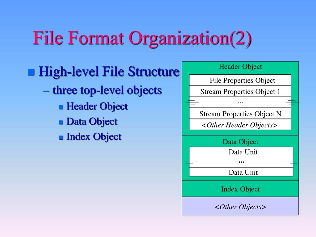 File Format Organization(2)