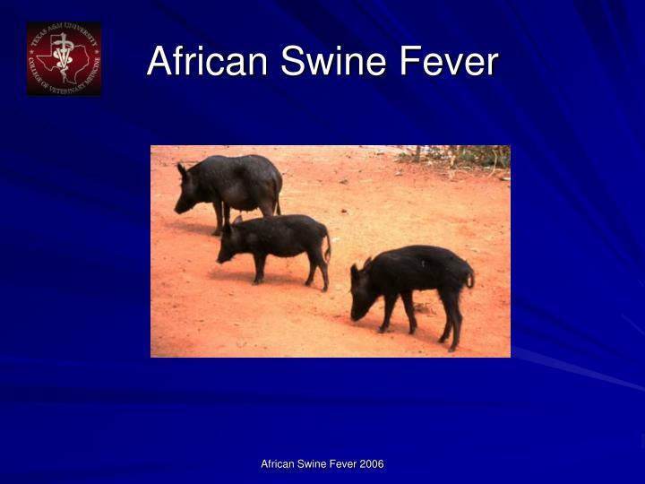 African swine fever1