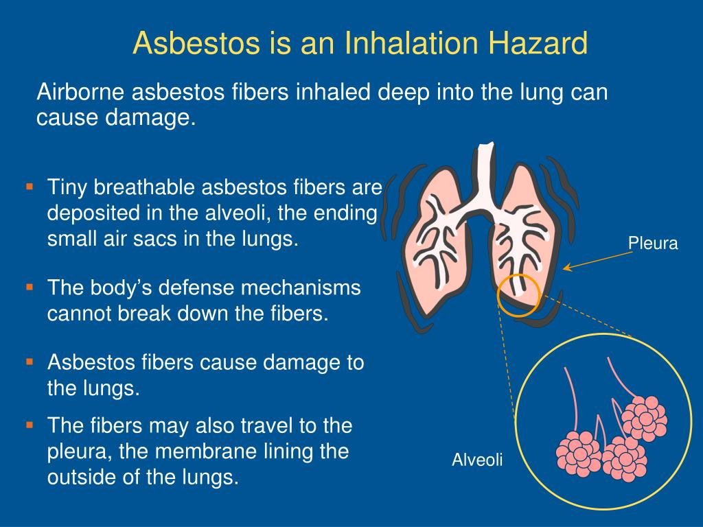 Airborne asbestos fibers inhaled deep into the lung can cause damage.