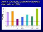partner lost his job racial ethnic disparities 2003 only n 3 728