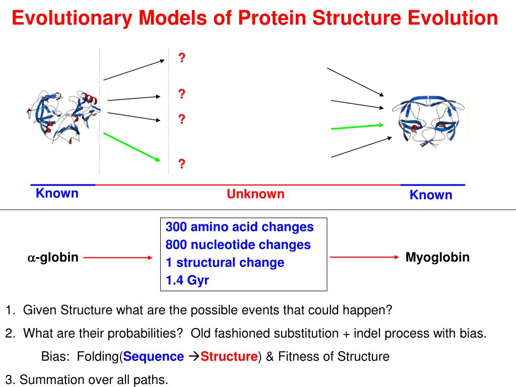 Evolutionary Models of Protein Structure Evolution