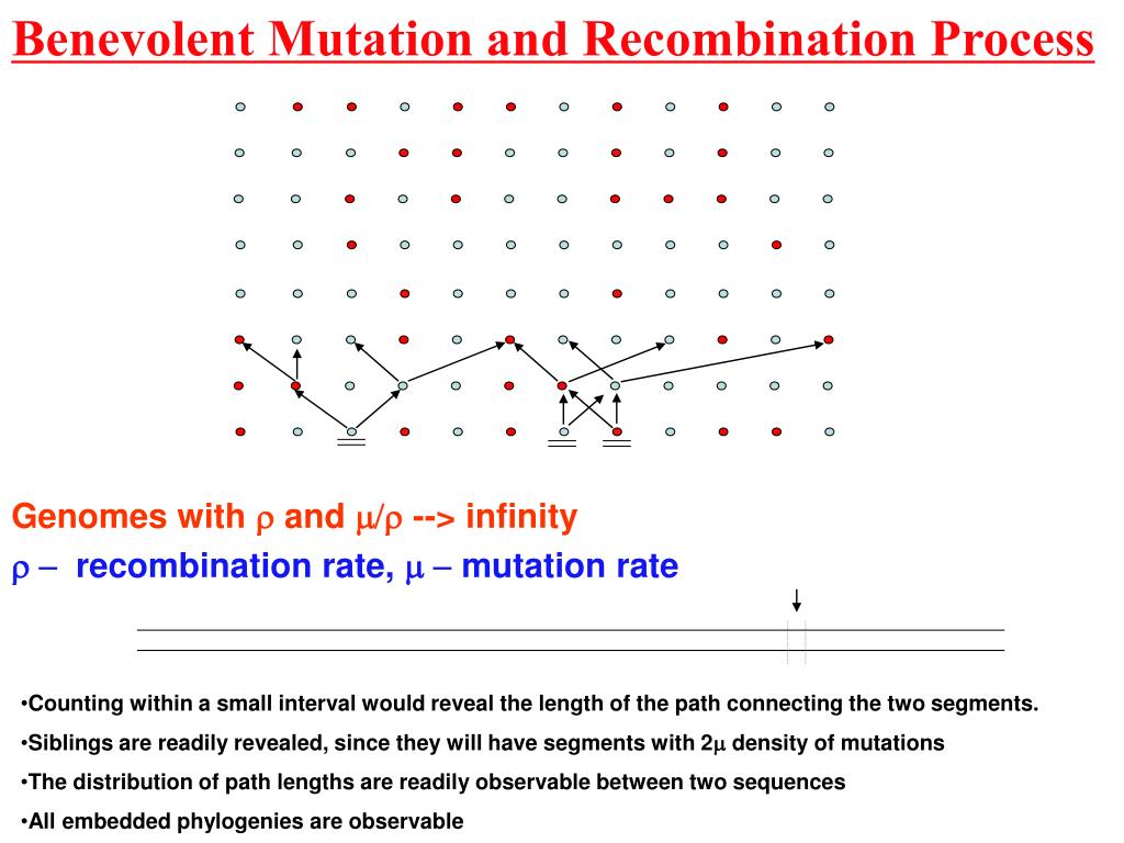 Benevolent Mutation and Recombination Process