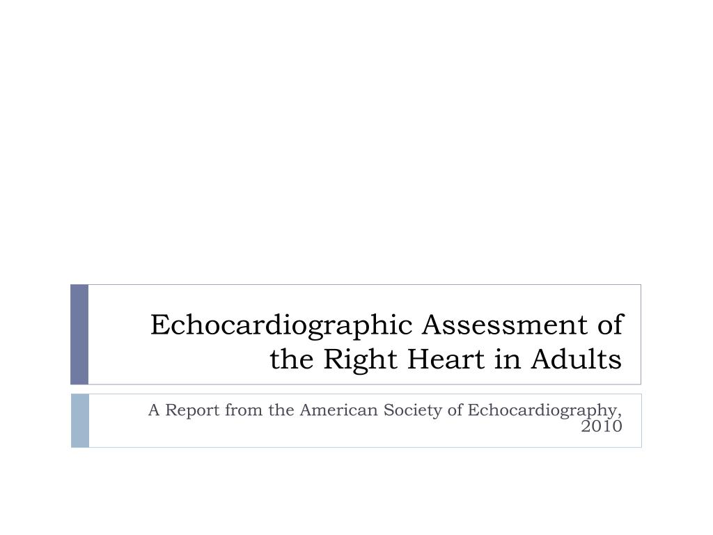 echocardiographic assessment of the right heart in adults l.