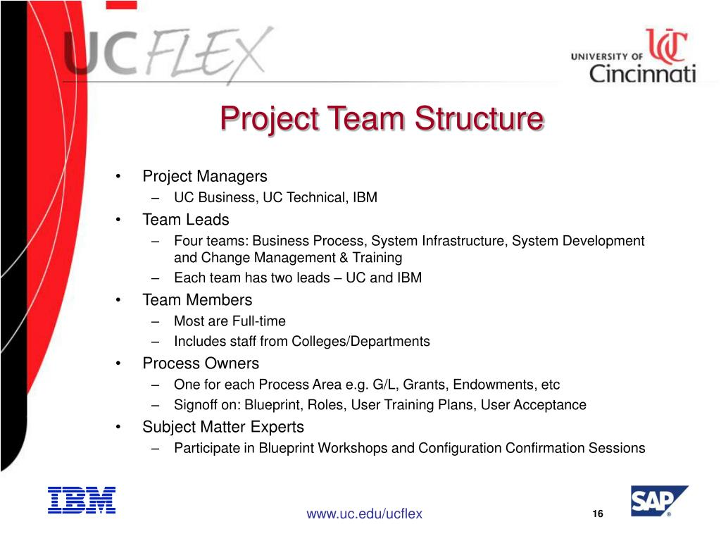 Project Team Structure