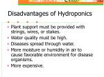 disadvantages of hydroponics