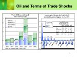 oil and terms of trade shocks