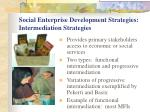 social enterprise development strategies intermediation strategies