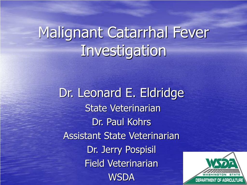 malignant catarrhal fever investigation l.